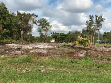 Land Clearing Port Orange